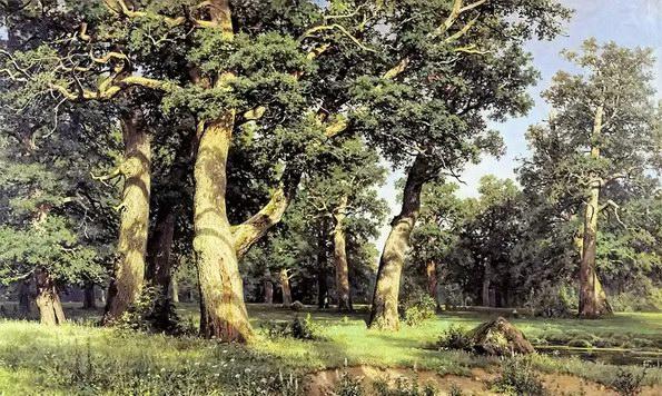 伊万·希什金油画《橡树林》